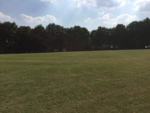 Notgrove Cricket Club - the perfect training ground for dedicated young players